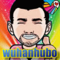 wuhanhubo